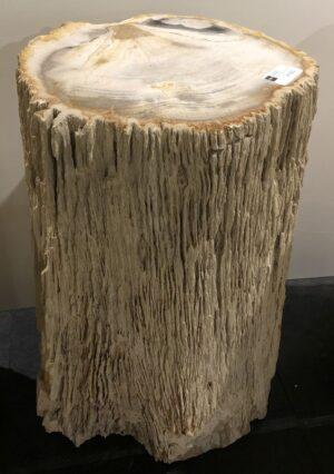 Beistelltisch versteinertes Holz 12339