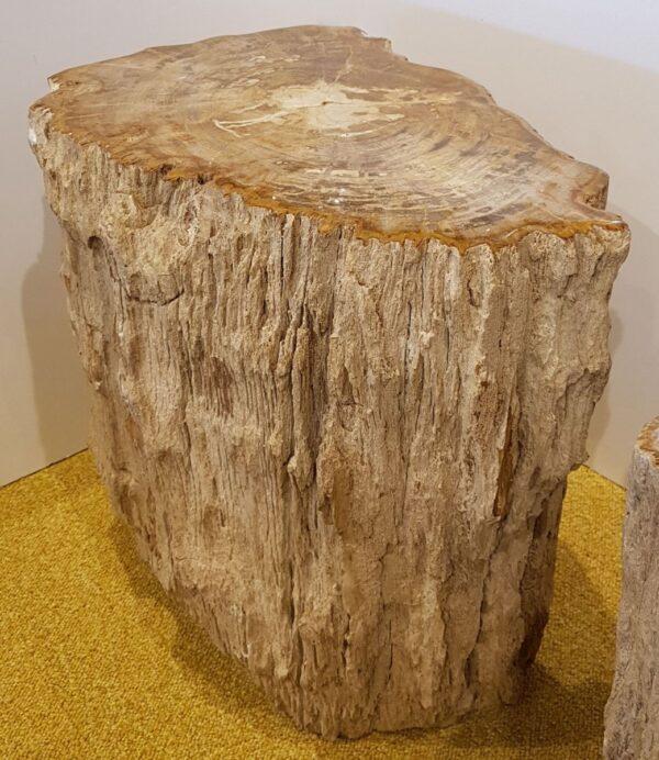 Beistelltisch versteinertes Holz 24056