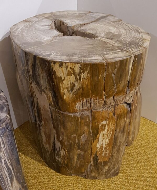 Beistelltisch versteinertes Holz 25006