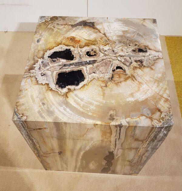 Beistelltisch versteinertes Holz 26361