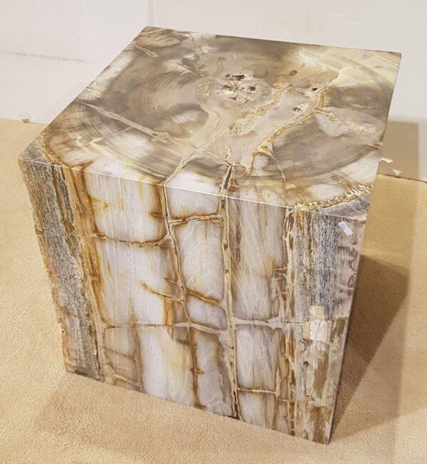 Beistelltisch versteinertes Holz 26364