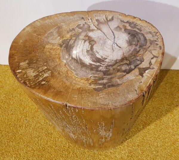 Beistelltisch versteinertes Holz 27532