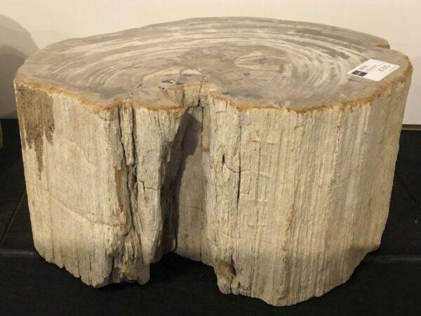 Beistelltisch versteinertes Holz 28036