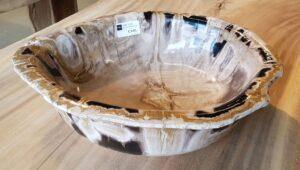 Schale versteinertes Holz 27558