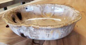 Schale versteinertes Holz 27564