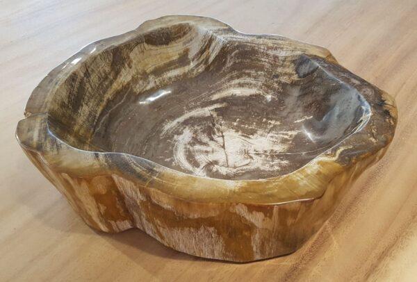 Schale versteinertes Holz 28049
