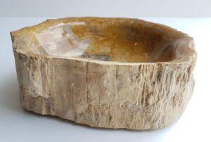 Schale versteinertes Holz 28054