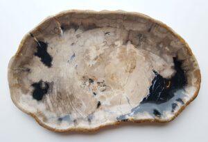 Teller versteinertes Holz 28107