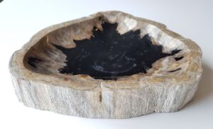 Schale versteinertes Holz 28627