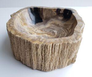 Schale versteinertes Holz 28740