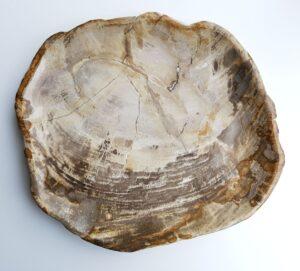 Teller versteinertes Holz 29399