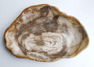Teller versteinertes Holz 29443