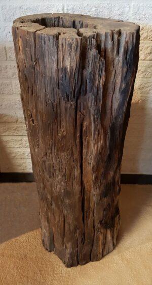 Driftwood 11534