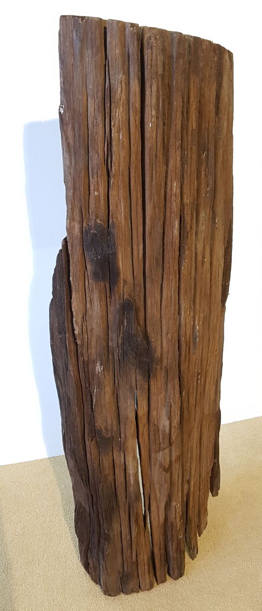 Driftwood 11537