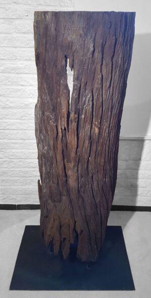 Driftwood 11543