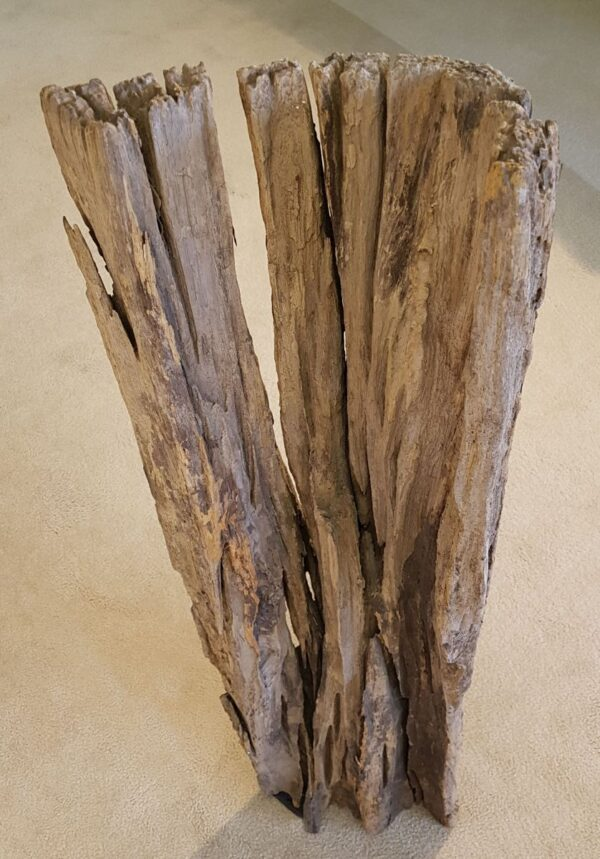Driftwood 11544