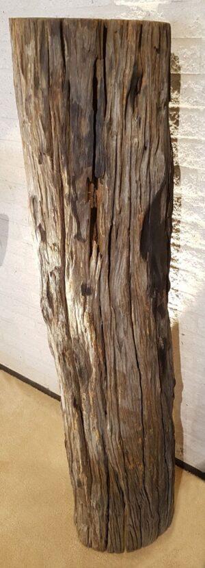 Driftwood 11560