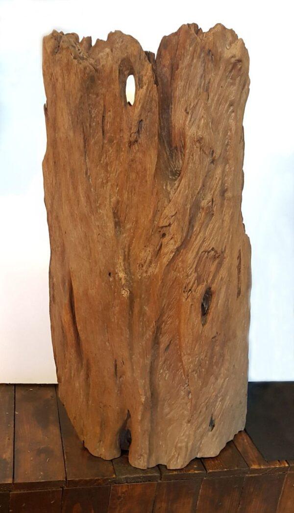 Driftwood 11579