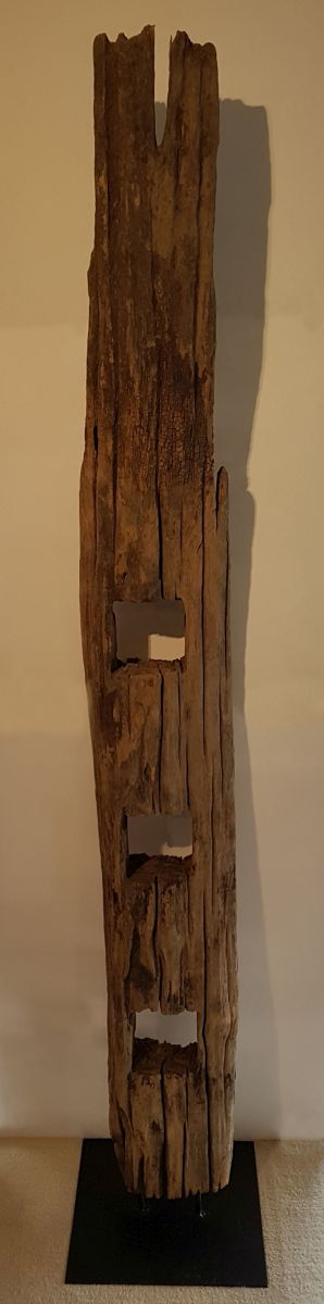 Driftwood 11616