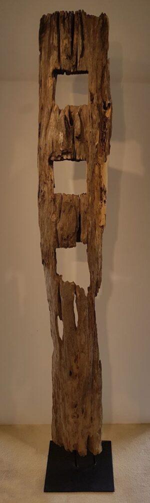 Driftwood 11623