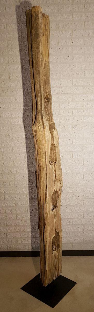 Driftwood 11630