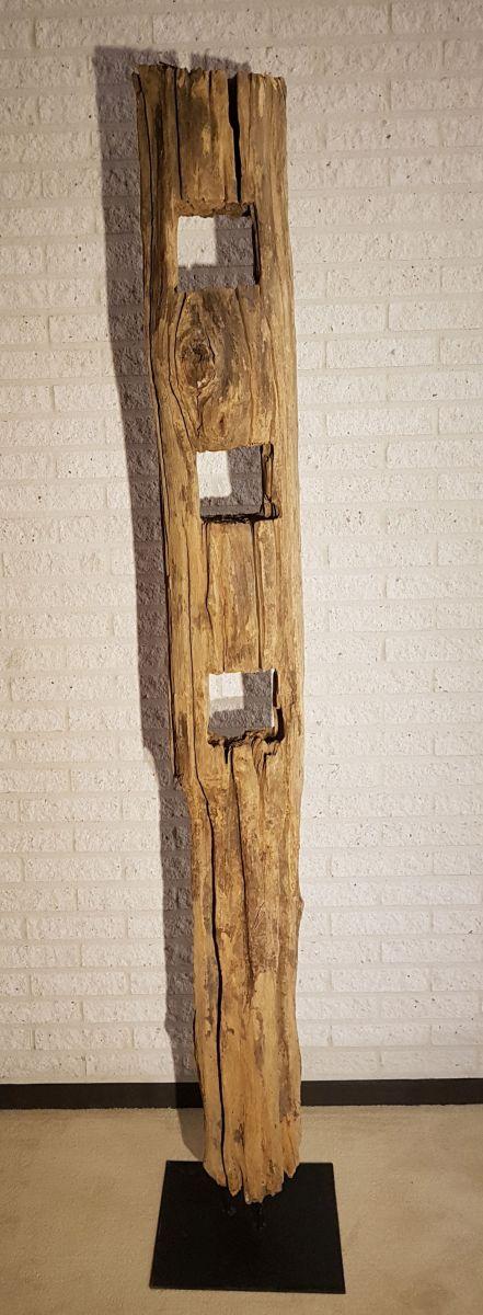 Driftwood 11632