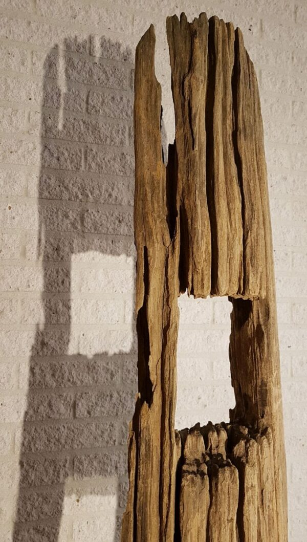 Driftwood 11633