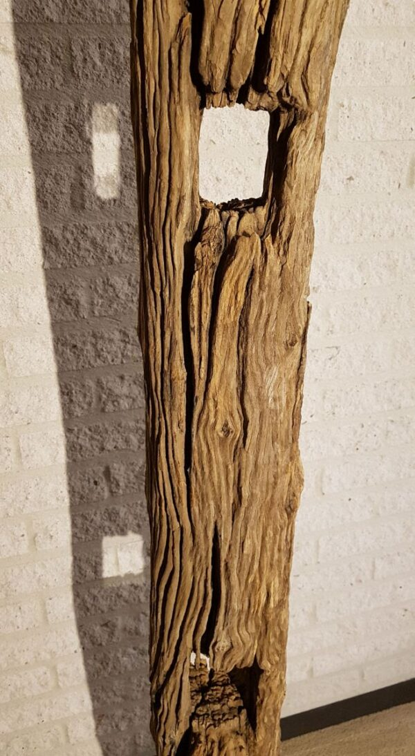 Driftwood 11635