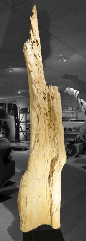 Driftwood 12773