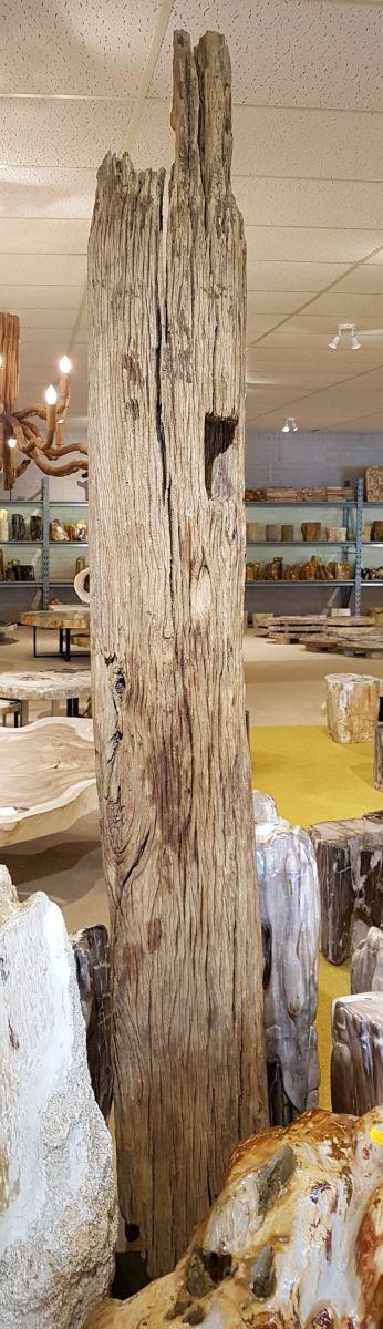 Driftwood 12780