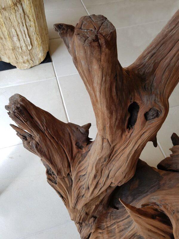 Driftwood 21618