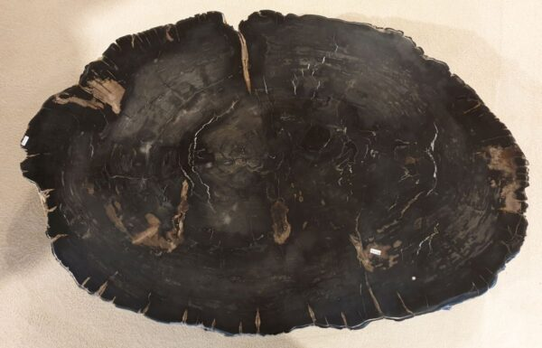 Couchtisch versteinertes Holz 32172