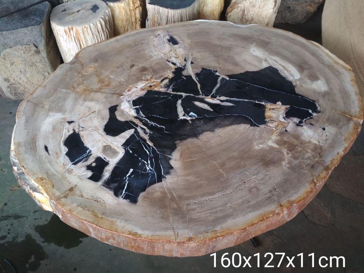 Couchtisch versteinertes Holz 32175