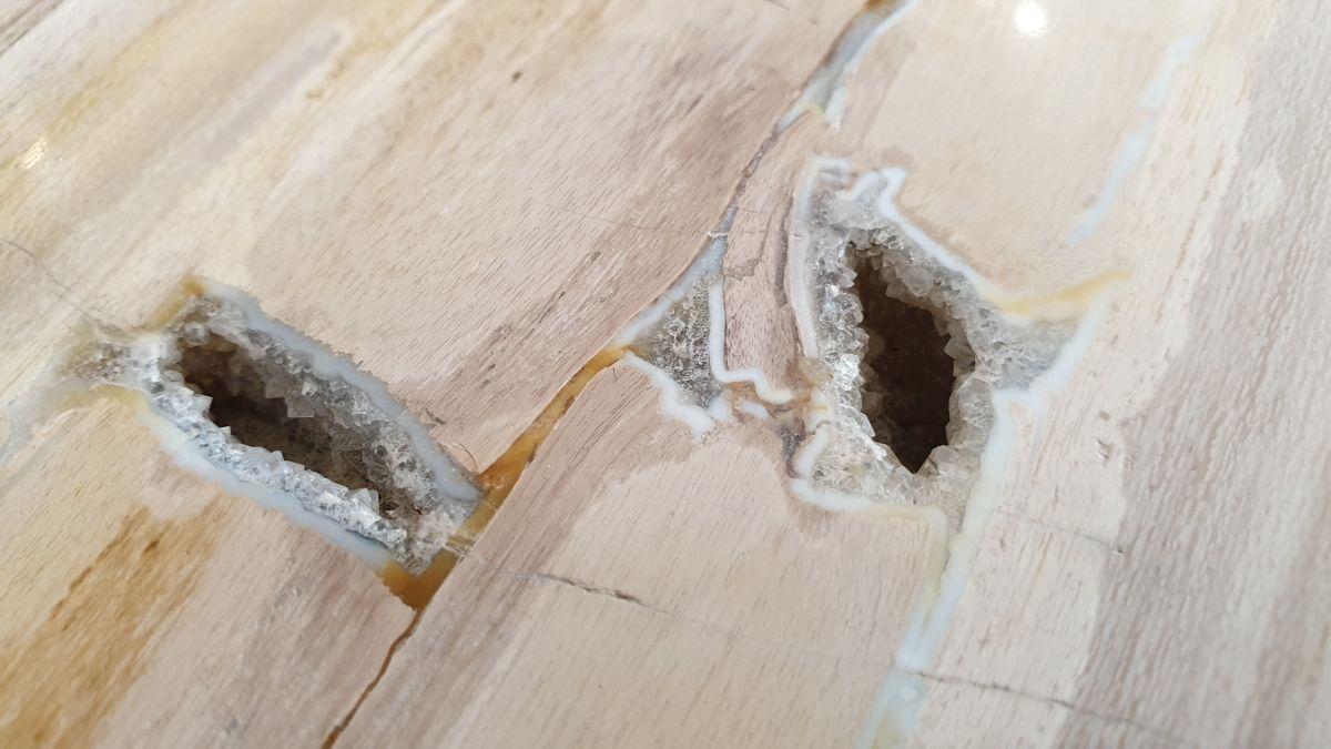 Couchtisch versteinertes Holz 32281