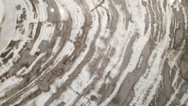 Couchtisch versteinertes Holz 32294