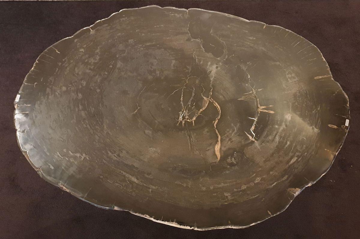 Couchtisch versteinertes Holz 32341