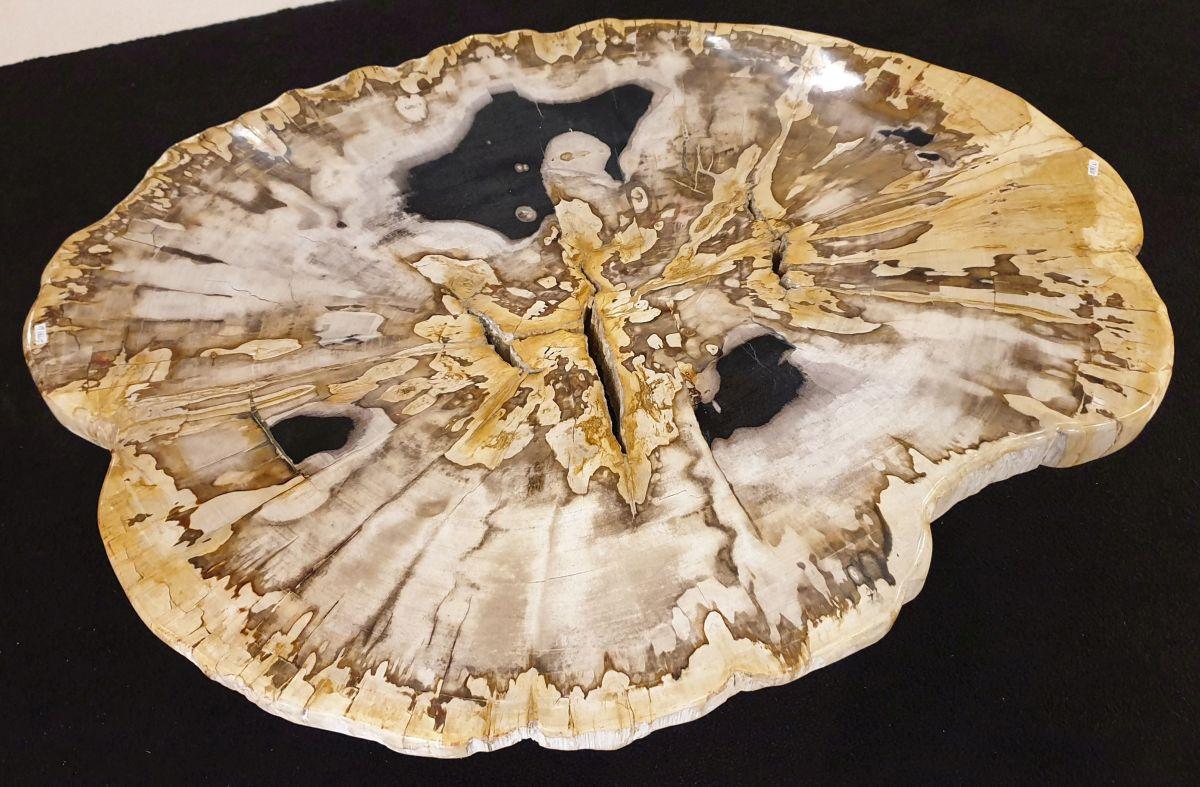 Couchtisch versteinertes Holz 32350