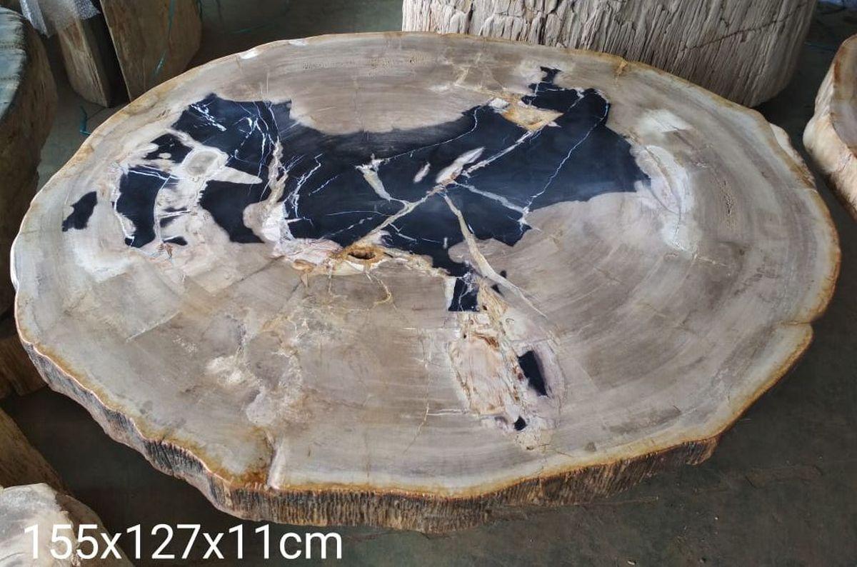 Mesa de centro madera petrificada 32177