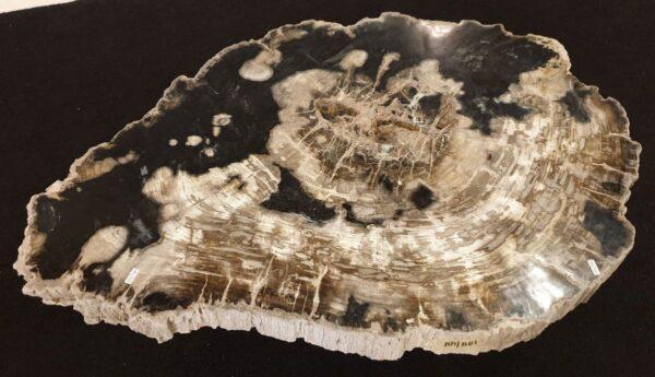 Mesa de centro madera petrificada 32239