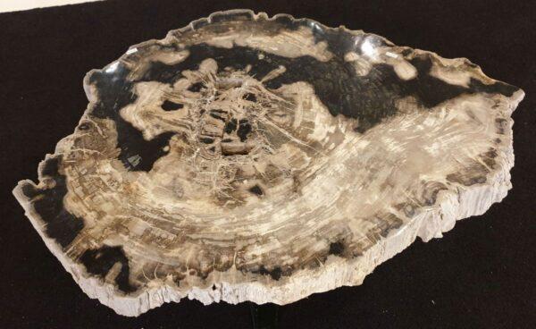 Mesa de centro madera petrificada 32242