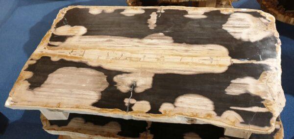 Mesa de centro madera petrificada 32283