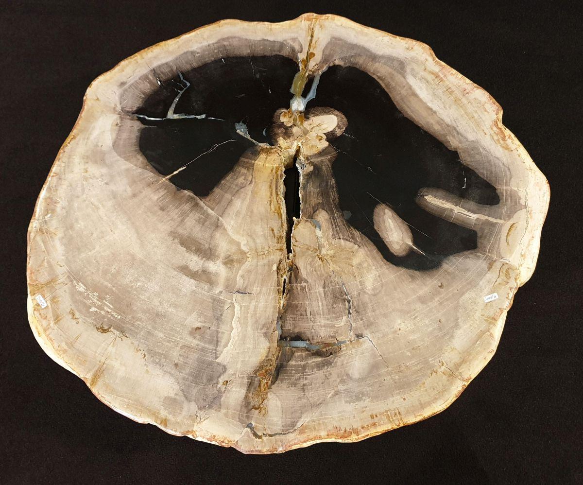 Mesa de centro madera petrificada 32330