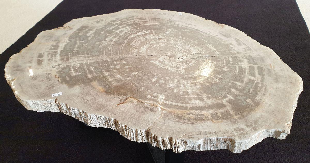 Salontafel versteend hout 32222