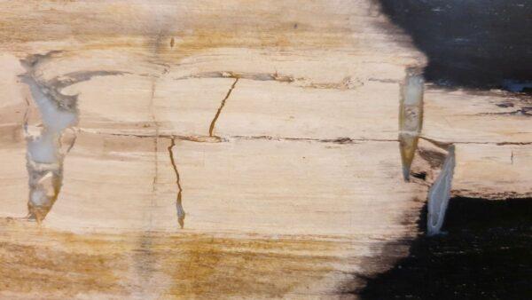 Salontafel versteend hout 32283