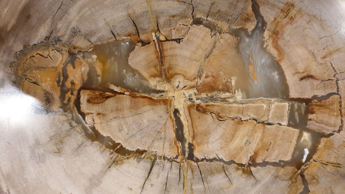 Salontafel versteend hout 32300