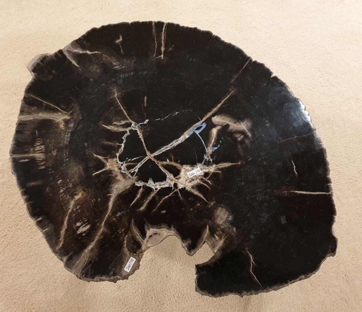 Salontafel versteend hout 32415