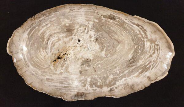 Table basse bois pétrifié 32185