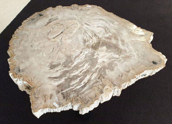 Table basse bois pétrifié 32212