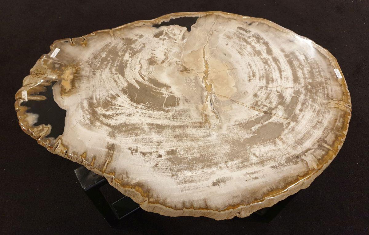Table basse bois pétrifié 32297
