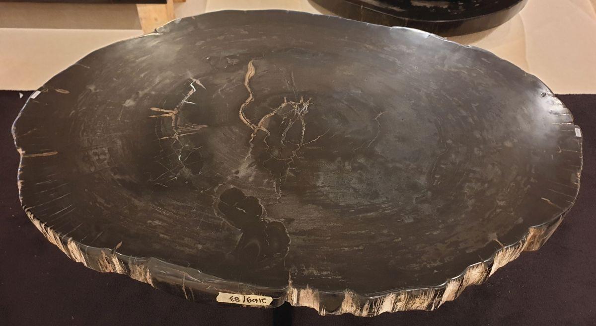 Table basse bois pétrifié 32341